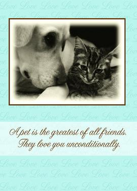 Veterinary Sympathy Cards Program Perfect For Your Busy Vets Office